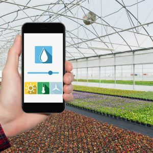 greenhouse remote monitoring system