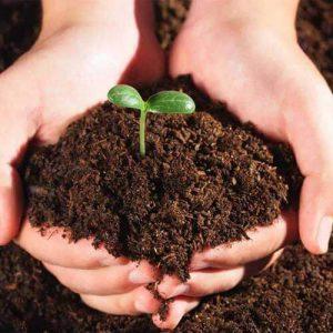 soil tester